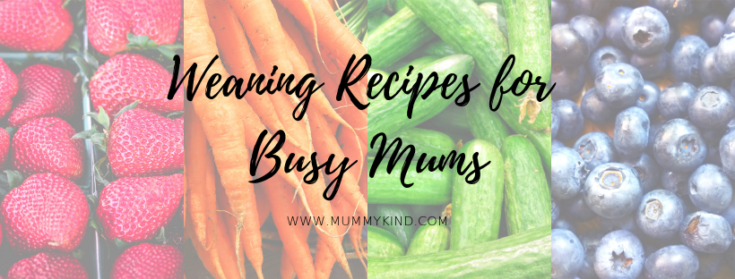 Perfect Weaning Recipes for Busy Mums